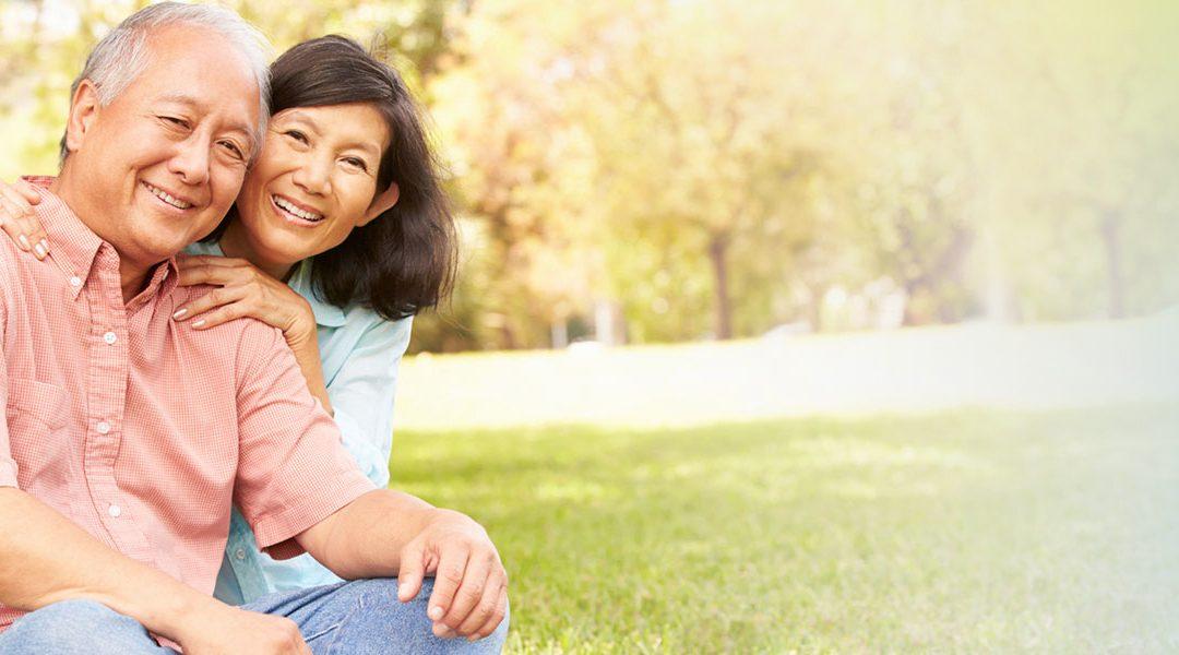 The Pension Loan Scheme